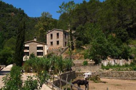 Casa en zona de montaña - puigpunynet - House