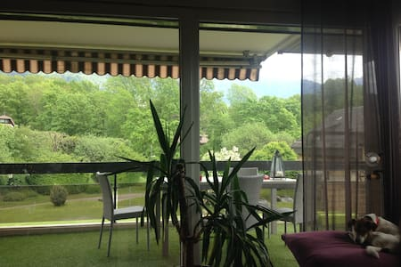 Room between  Montreux and Vevey - La Tour-de-Peilz - Appartement