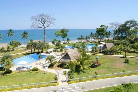 Ocean Front Condo For Rent Bijao, Rio Hato, Panama - Daire