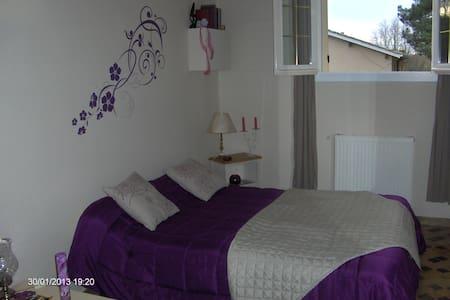 Une chambre au calme et au vert - Casteljaloux - House