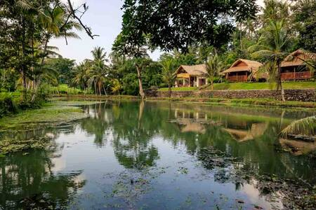 Authentic balinese holidays in the rice fields 2 - Bed & Breakfast