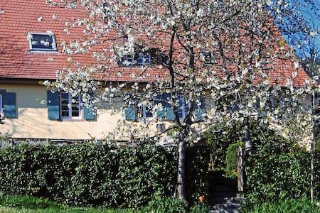 Bettcouch für eine Nacht - Malsburg-Marzell - Apartament