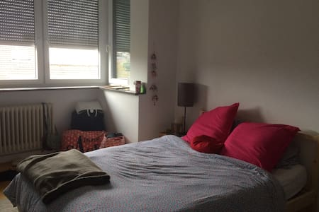 Cosy Room in a friendly Apartment - Stuttgart