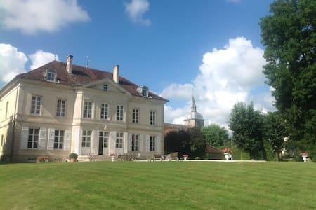 Au château - Villegusien-le-Lac - Bed & Breakfast