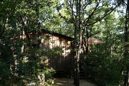 le chalet dans les bois - Haus