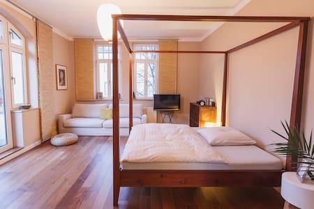 Beautiful renovated apartment - Pis