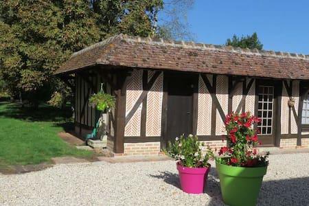 Le Marronnier - Souvigny-en-Sologne