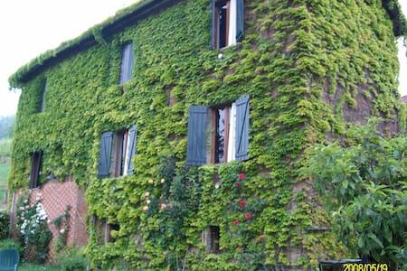 elegante rustico immerso nel verde - House