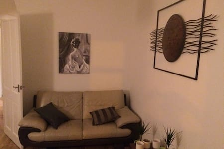 One bedroom south side flat. - Glasgow - Apartament