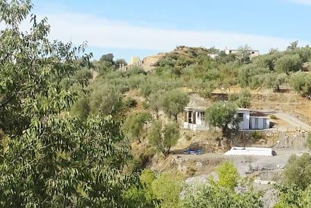 Cortijo Olivo - Casa