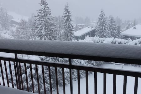 Beau Argentiére Chamonix Mont Blanc (incl. wi-fi) - Chamonix-Mont-Blanc