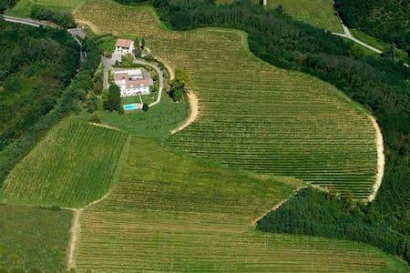 Weingut Incisiana Landhaus - Incisa Scapaccino - Haus