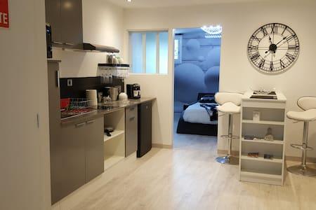 Appartement 40m² moderne, refait à neuf - ALBI - Albi - Apartament