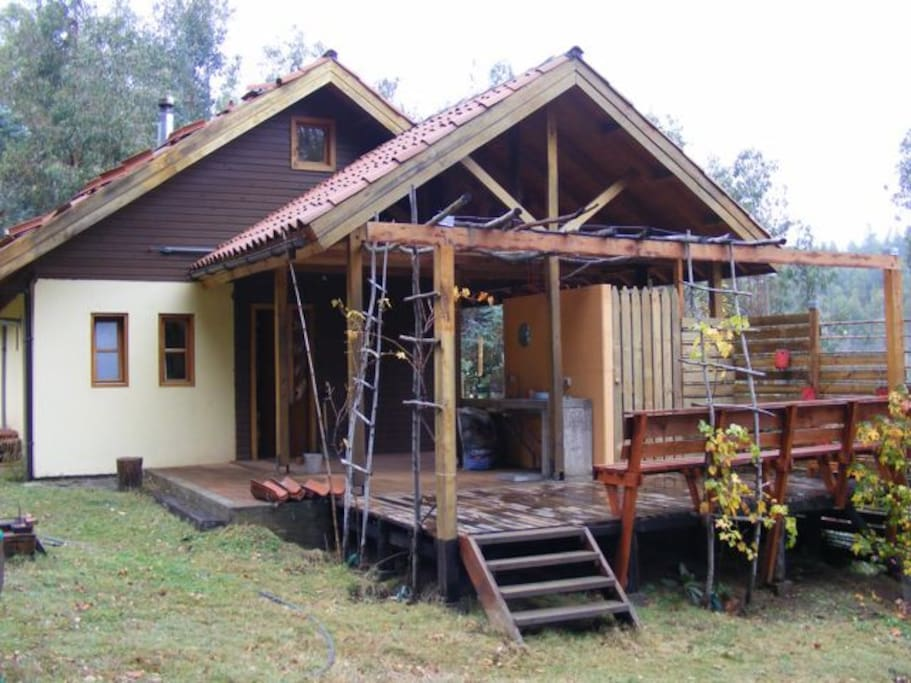 side view with deck and outdoor kitchen (the vines now cover the outer portion of the deck area.