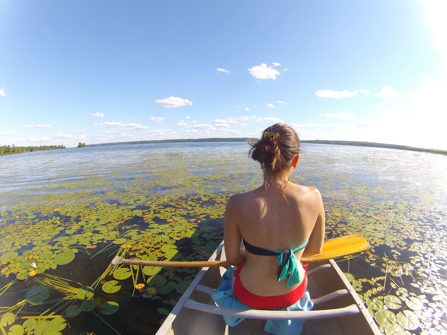 Take your (our) canoe to visit the aquatic wonders of the River