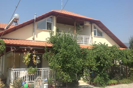 Nea Vrasna 4 person Apt near Sea(2) - Apartment