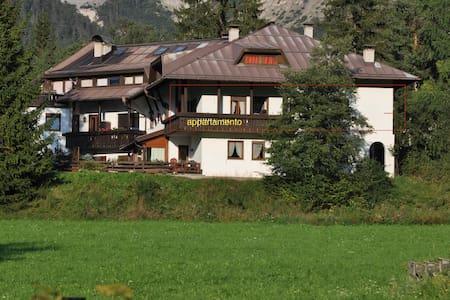 casa comoda e accogliente - San Vigilio - Haus