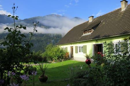 Villa Siebenruh - Obervellach - Appartement