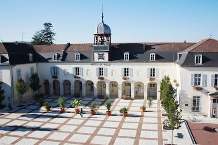 GITE TOURISTIQUE DU COUVENT - Bar-sur-Aube - Lejlighed
