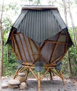EcoPod Kasaguadua - Salento