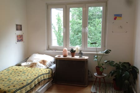 Cosy Room in Sternschanze hotspot