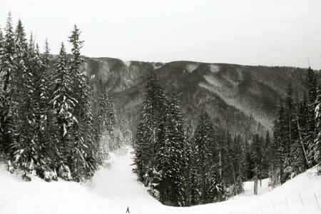 Stunning Ski Condo at Silver Star - Lakás