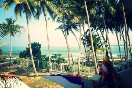beach rest hotel - Hikkaduwa