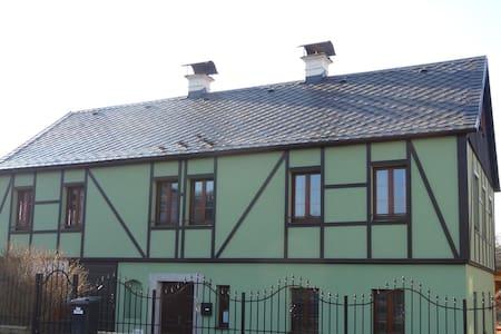 Gold Retriever's Apartment - Nový Bor - Hus