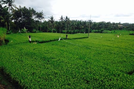 Healing Village w/Pool *Campurx2 - Ubud - Villa
