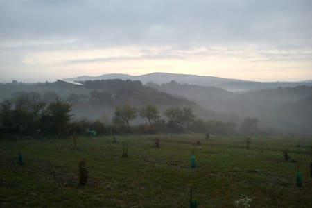 Au Cœur de l'Ibie et d'Aqua Ardèche - Villeneuve-de-Berg - Villa