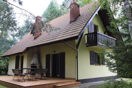 Dom pod lasem z sauną - Ciekoty gmina Masłów - House