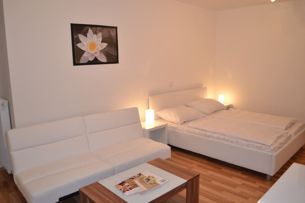 Classy Low Price Near Belvedere Apartments For Rent In