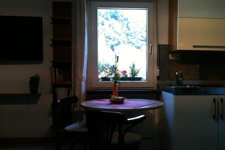 Helle Wohnung mit altem Fachwerk - Dernau - Apartamento