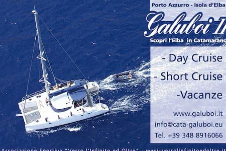 Cruising catamaran Isle of Elba  - Porto Azzurro