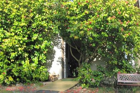 gite  camelias des 2 gites  piston - Saint-Paul-lès-Dax - House