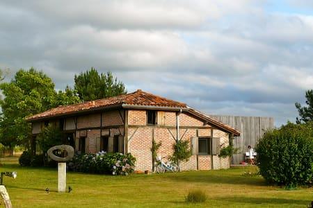 LEVIGNACQ, Wine Cellar from 1835 - Lévignacq