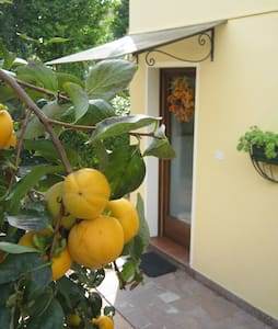 B&B tra Cortina e Venezia - Vittorio Veneto - Bed & Breakfast