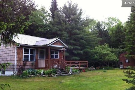 Mid-Cen Mod Cottage - The Catskills - Livingston Manor - Ev