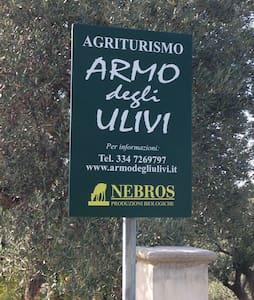 ARMO degli ULIVI - Mirto - Bungalow