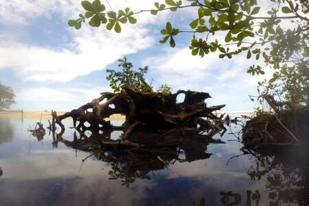 Photosynthesis Jungle Bungalows - Puerto Viejo de Talamanca - House