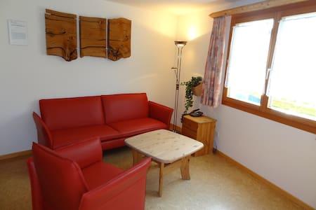 Gemütliche 2-Zimmer Wohnung Samedan - Appartamento