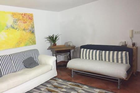 Confortevole mansarda con terrazzo - Loft