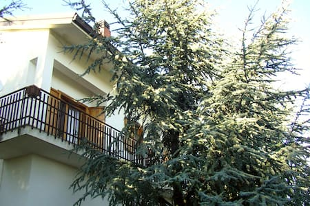 B&B Villa Caterina - Nicolosi - Bed & Breakfast