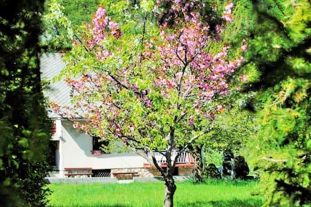 """Home Hotel """"Kakoste"""" for 1+ - Gozd Martuljek - House"""