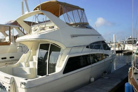 Never in a Hurry 36' Motor Yacht
