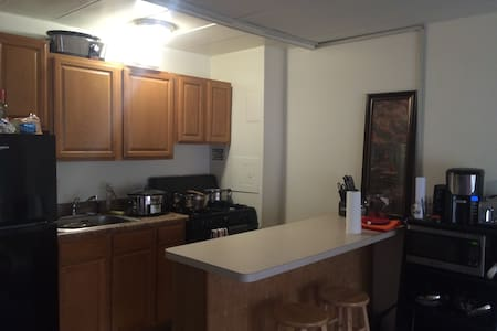 Private 1BR close to Papal Visit! - Apartment