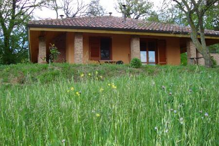 Mini appartamento in campagna - Bed & Breakfast