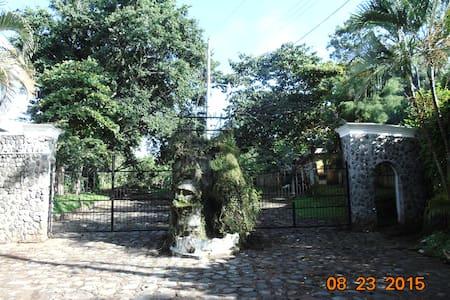 Comodo, facil acceso, natural - San Martín Zapotitlán - Bungalow