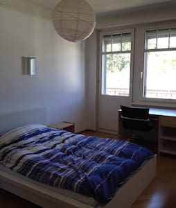 Spacious room near Center of Zurich - Zürich - Apartment