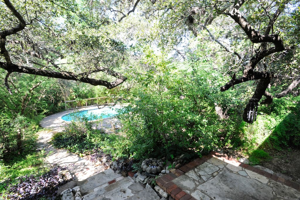 Romantic Walkway with Surrounding Nature Gorgeous Live Oak and Private Pool